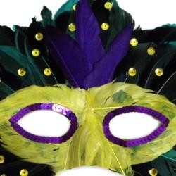 Purple, Green, and Yellow Feather Masquerade Mask Assorted Styles with a Stick
