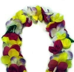 40in Assorted Color Tropical Sunrise Lei