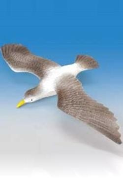 Plastic Sea Gull