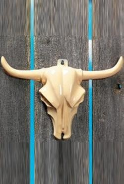 12in x 8in Plastic Steer Head Wall Decoration