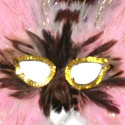 Pink Feather Masquerade Mask with Gold Tinsel with Dyed Pheasant Feathers with Sequin Trim Around Th