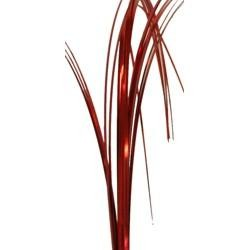 Red Onion Grass