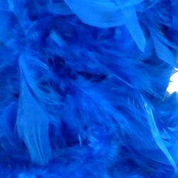 Turquoise Feather Boas
