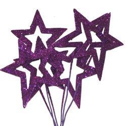 Glittered Purple Star Picks