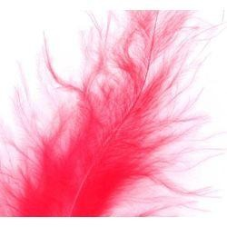 3in-7in Long Red Craft Feathers