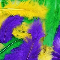 14gr Craft Feathers Mardi Gras Mix
