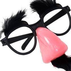 Funny Disguise Nose/ Glasses