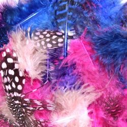 3gr Guinea Assorted Colors Blue/ Hot Pink/ Purple Craft Feathers