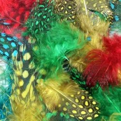 3gr Guinea Assorted Colors Green/ Red/ Turquoise/ Teal Craft Feathers