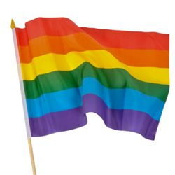 12in x 18in Rainbow Polyester Flag