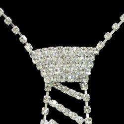 6 3/4in Rhinestone Tie Necklace