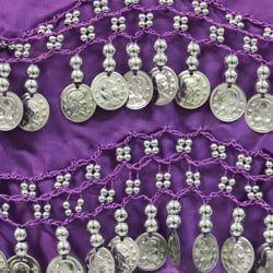 Purple Velvet Sash W/Metallic Silver Coins