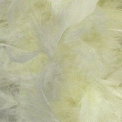 7-8in Wide x 6ft Long Ivory Feathers Boa
