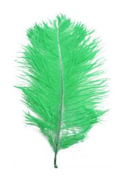 15in Green Ostrich Feather