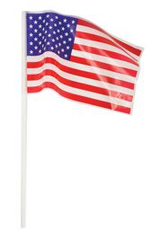 4in x 6in Plastic USA Flag w/ Stick