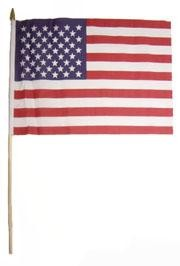 12in x 18in Polyester USA Flag