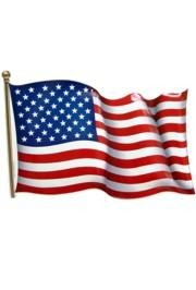 American Plastic Flag 3D Art Form