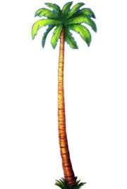 6ft Jointed Palm Tree