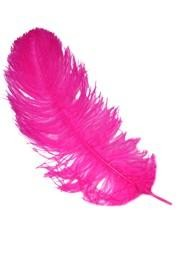 17-26in Hot Pink Ostrich Plumes/ Feathers