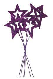Glittered Purple Star Picks