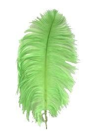 15in Ostrich Apple Green Feather/ Plume