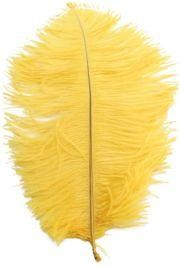 15in Ostrich Yellow Feather/ Plume