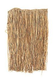Plus-Size Natural Raffia Hula Skirt Adult