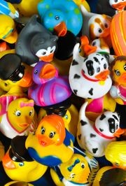 2in Rubber Duck Assortment