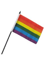 4in x 6in Rainbow Polyester Flag